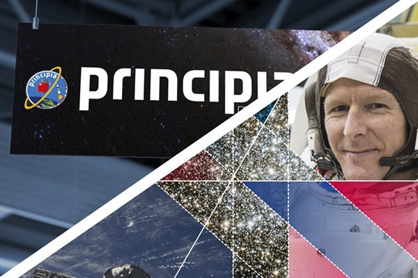 Principia branding and graphics