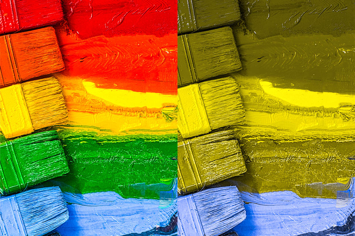 A split screen view of five horizontal paint brushes, each daubing a vibrant stripe of colour from right to left. The top stripe is red followed by orange, yellow, green and blue. Each paint brush is the same colour as its thick stripe of lumpy paint. A rainbow effect is created from the use of multiple bold colours stacked top to bottom. The same image on the right is colour corrected to display how a person with Protanopia type colour blindness may view it to give a clear comparison of how indistinguishable particular colours can be and therefore how a rainbow of colour might be viewed. The red, orange and green stripes become virtually identical in colour with the yellow appearing the same colour but a lighter shade and the blue stripe as the only distinguishable colour.